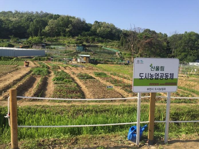 3-1.부천시+도시농업체험장(시민농장)신문2020년 1월.jpg