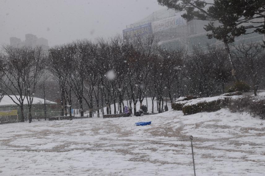 사본 -DSC_3662신문2020년 1월.jpg